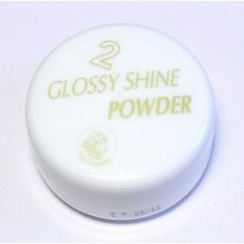 Glossy Shine – pudr GSP 389 – 10 g